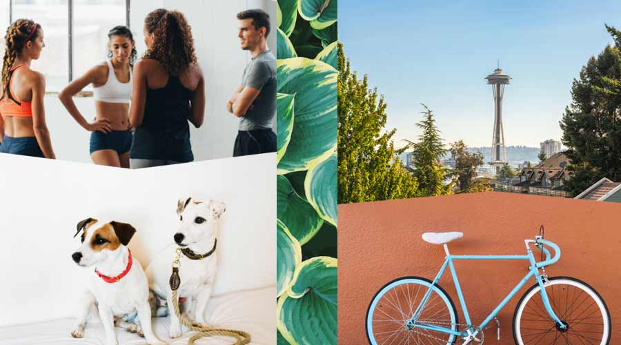 Photo of people in exercise clothes, dogs, bicycle and Seattle's space needle
