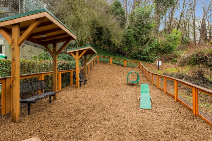 All new dog park for your furry friends.